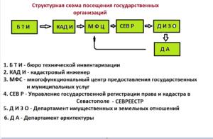 структурную схему посещения