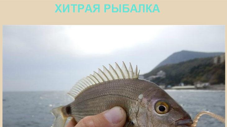 Рыбалка на хитрую